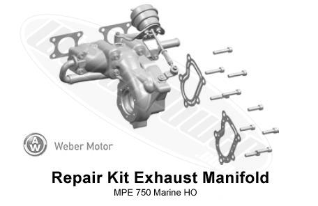 weber mpe 750 service manual